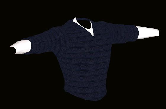 Male Blue Sweater Model